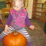 This pumpkin is big enough to sit on!